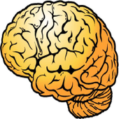 BrainWallpaper icon