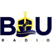 BIU Radio icon