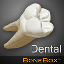 APK BoneBox™ - Dental Lite