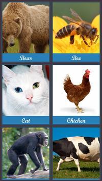 Cute Animal Sounds apk screenshot