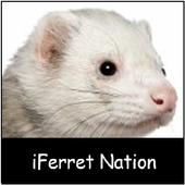 iFerret icon