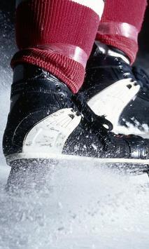 ice skating live wallpaper poster