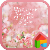 ItIs Spring DodolLauncherTheme icon