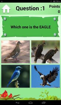 Bird Quiz and Card screenshot 3