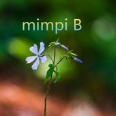 mimpi B icon