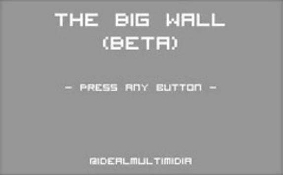 The Big Wall poster