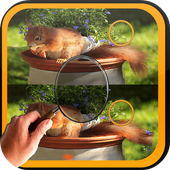 Find Difference squirrel icon