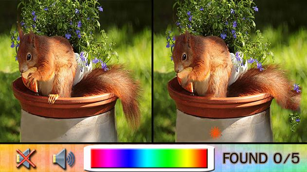 Find Difference squirrel poster