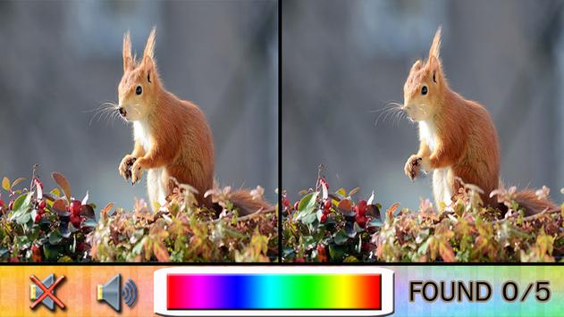 Find Difference squirrel apk screenshot
