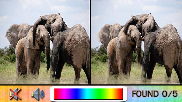 Find Difference elephant poster