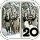 Find Difference horse APK