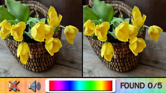Find Difference flower garden apk screenshot