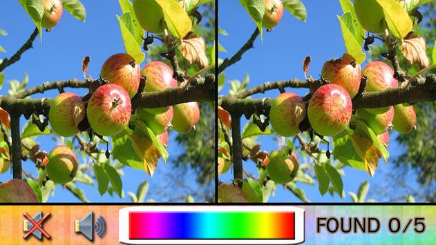 Find Difference garden fruit poster