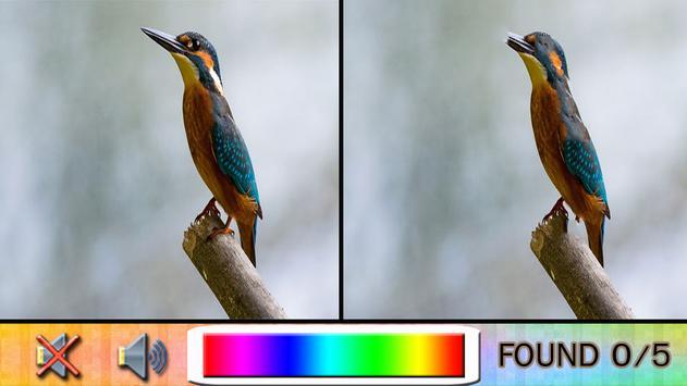 Find Difference bird apk screenshot