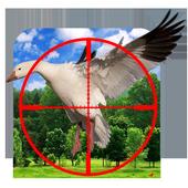 Sky Fly Birds Hunter Sniper icon