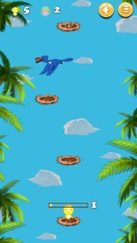 Rio Bird Training poster