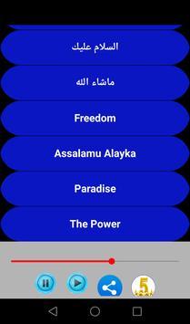 Maher Zain Songs apk screenshot