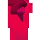 RDV IITD icon