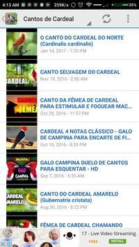 Cantos de Cardeal HQ 2017 screenshot 2