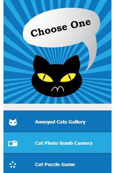 Annoyed Cats screenshot 10
