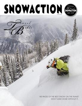 Snow Action poster