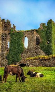 Ireland Country New Jigsaw Puzzles apk screenshot