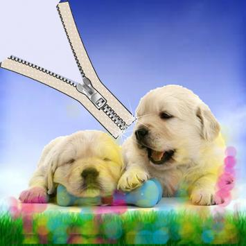 Puppy pet zipper screen lock poster