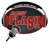 Radio Flash Sud icon