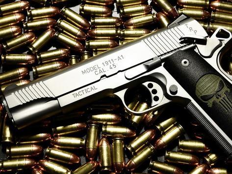 Gun Wallpaper apk screenshot
