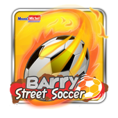 Barry Street Soccer icon