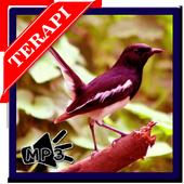 mp3 Terapi Kacer Stres icon
