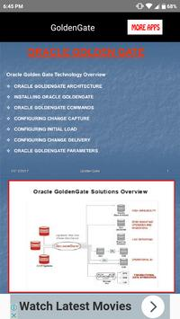 Oracle Golden Gate screenshot 2