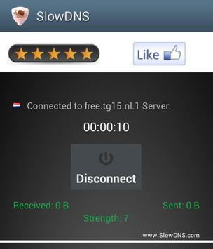 VPN Over DNS  Tunnel : SlowDNS screenshot 5