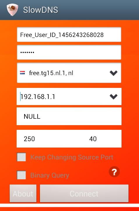 VPN Over DNS Tunnel : SlowDNS for Android - APK Download