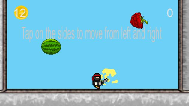 Ninja fruit smasher poster