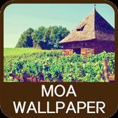 Moa Wallpaper icon