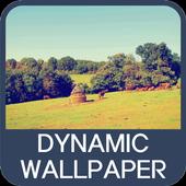 Dynamic Wallpaper icon