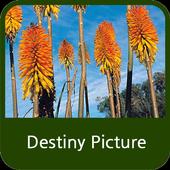 Destiny Picture icon