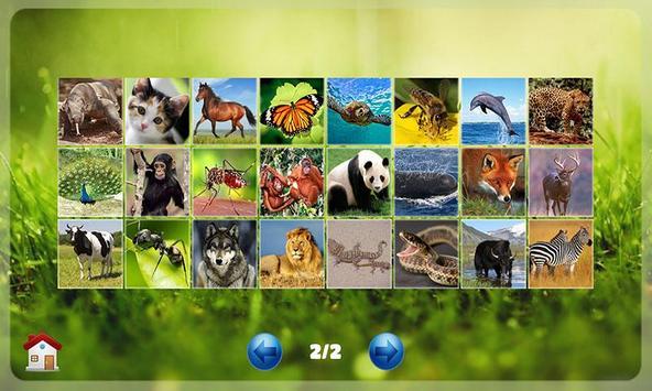 Belajar Membaca Binatang ảnh chụp màn hình 2