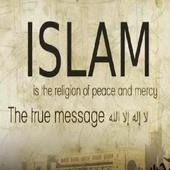 Aliran-aliran dalam Islam icon