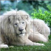 Singa - Puzzle Hewan icon