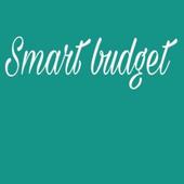 smart budget icon