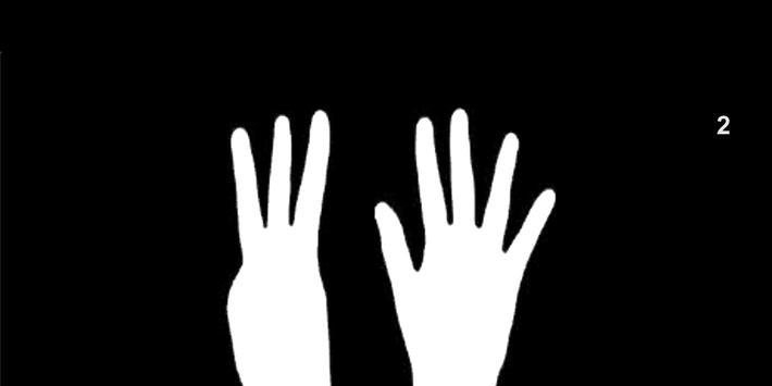 Count the Fingers screenshot 3