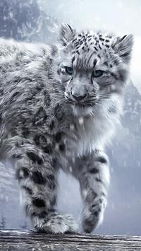 Animals HD Wallpapers 2018 poster