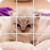 Shuffle Puzzle - Cats icon