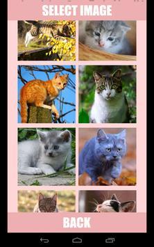 Shuffle Puzzle - Cats apk screenshot