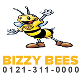 Bizzy Bees Cars icon