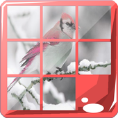 Bird Puzzle Jigsaw Game icon