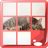 Cat Puzzle Jigsaw Game icon
