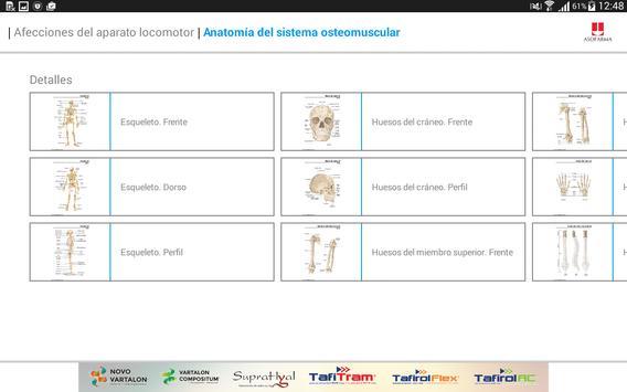Mini Atlas Musculo Esquelético apk screenshot